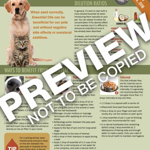dog-cat-tear-sheet-front2